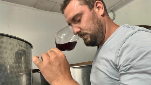 Dolceacqua (IM): tutta la bellezza del Rossese ed il suo legame con il territorio nella bontà dei vini della cantina Ascari