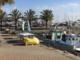 Taggia: nuovi spazi per i pescatori professionisti della Darsena, lavori edili affidati alla ditta Olivieri Srl