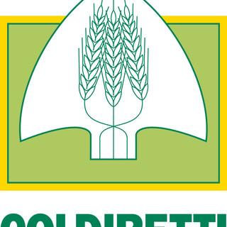 Mercoledì prossimo, premiazione regionale degli 'Oscargreen 2020: gli innovatori di natura dell'Agricoltura ligure'