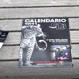 Presentato il calendario dei carabinieri del Cites 2021, forte l'impegno anche in provincia di Imperia a protezione delle specie a rischio (video)