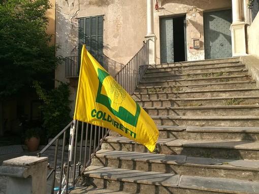 DL Semplificazioni: con l'addio al segreto di stato via libera alla trasparenza, risultato storico che tutela il Made in Liguria