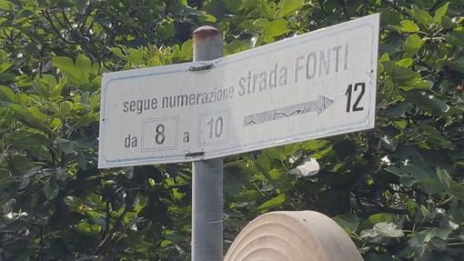 Sanremo: cinghiali devastano via Delle Fonti a Bussana, la segnalazione con foto di un residente