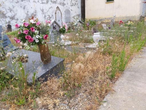 """Progetto Imperia interroga la maggioranza sui cimiteri """"Chiediamo se e quando verrà effettuata la manutenzione"""""""