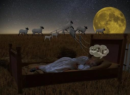 Hai mai sognato qualcosa di strano e vorresti comprenderne il significato? Con Sognipedia è possibile!