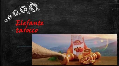 Fellici & Veloci, la nuova Ricetta AutograFATA di Fata Zucchina. Oggi prepariamo l'elefante tarocco