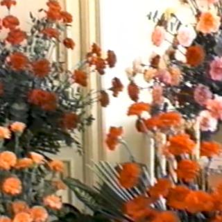 """Sanremo 1986: la prima mostra del fiore """"FLORANGA"""""""