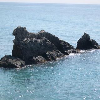 Vasche per l'itticoltura alla galeazza, dopo la sentenza del Tar il comune riavvia l'iter per la modifica della concessione ad Aqua