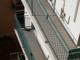 Sanremo: gabbianella ferita in un terrazzo da 4 giorni, l'appello di una lettrice