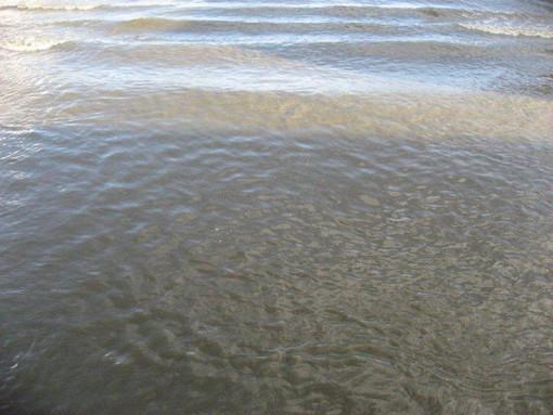Sanremo: inquinamento sul rio San Bernardo, confermato il gasolio. Per ora nessun rischio ambientale
