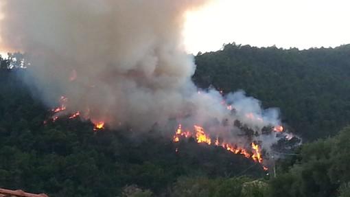Chiusanico: vasto incendio boschivo nella zona di Sarola, sul Vvf e Volontari e in arrivo l'elicottero