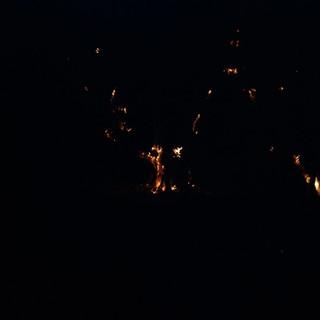 Imperia: incendio boschivo nella zona di Torrazza vicino alle abitazioni, in azione i Vigili del Fuoco