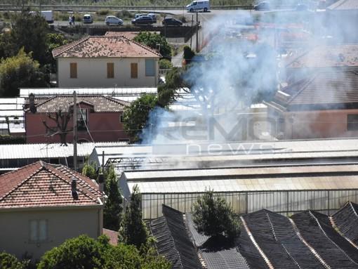 Taggia: principio d'incendio in una serra, intervento dei Vigili del Fuoco