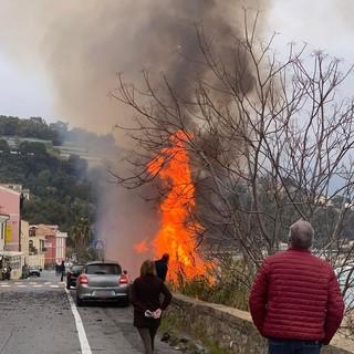 Bussana: paura per un grosso incendio sulla spiaggia, fiamme visibili da diversi chilometri (foto e video)