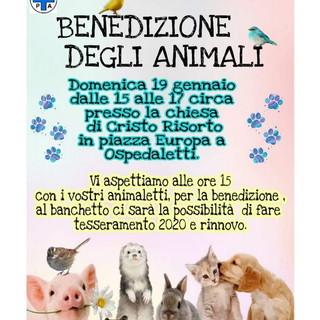 Ospedaletti: domenica prossima presso la Chiesa di Cristo Risorto la benedizione degli animali