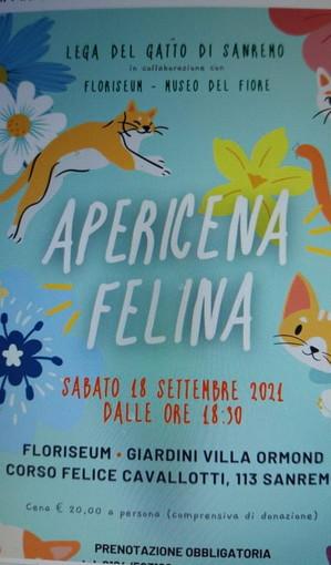Sanremo: domani sera alle ore 18,30 al Floriseum apericena per aiutare la Lega del Gatto