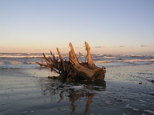 Arma di Taggia: ordinanza del Sindaco, fino al 29 marzo l'abbruciamento del legno accumulato sulle spiagge