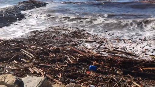 """Danni maltempo, Di Muro (Lega): """"Il Parlamento acceleri l'iter per l'approvazione della legge che classifichi come biomasse il materiale legnoso portato sulle nostre spiagge"""""""