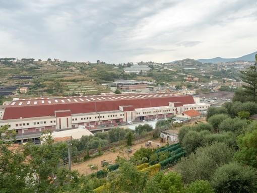 Sanremo: per la rottura di alcuni cupolini sul tetto del Mercato dei Fiori, stop alle attività sportive nell'area delle palestre