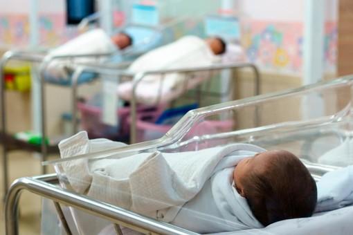 """Maternità, la Cgil Liguria invoca il ritiro della proposta di legge avanzata da FdI: """"L'ennesimo schiaffo alle donne"""""""