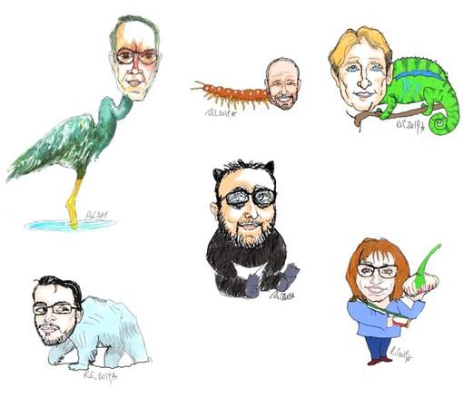 Prosegue il viaggio nel bestiario della politica: trampolieri, orsi solitari, cavalli bolsi, camaleonti cani e gatti e tanti altri