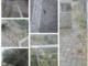 Il tratto della pista ciclabile fra Riva Ligure e Santo Stefano al Mare in totale degrado, fra animali morti e vegetazione incolta (Foto)