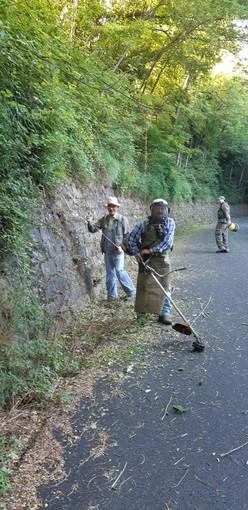 Una trentina di volontari al lavoro per eliminare potenziali pericoli sulla Provinciale 21 a Montalto Carpasio (Foto e Video)