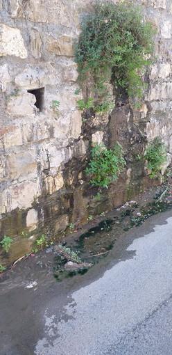 Sanremo: perdita d'acqua dal muro di sostegno della Montessori, la segnalazione con foto di un lettore
