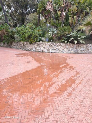 Sanremo: perdita d'acqua a Villa Ormond, la segnalazione con foto di un lettore