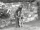 """""""Tra Storia e Ricordi"""" è dedicato a """"Rapallo, le armi al guinzaglio"""" nel videodocumentario di Roberto Pecchinino"""