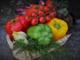 Santo Stefano al mare: disponibili i moduli per richiedere i sussidi alimentari. Ecco le modalità