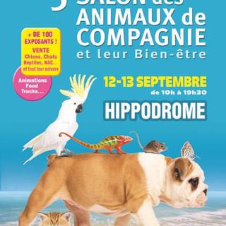 Tutti gli appuntamenti e manifestazioni di oggi, domenica 13 settembre, in Riviera e Côte d'Azur