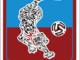 Calcio, Serie D. Saluzzo - Sanremese, i piemontesi decideranno entro la serata se chiedere il rinvio