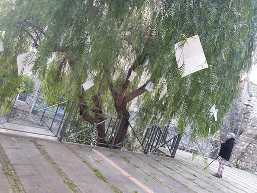 Sanremo, alla Pigna torna la diffusione della poesia del 'Vivaio del Verso' (foto)
