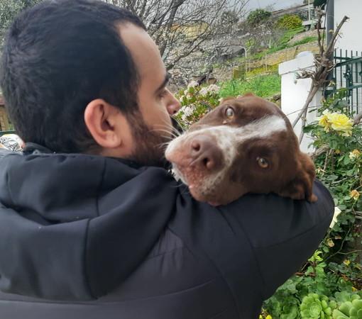 Enpa di Sanremo: il cucciolone Zeus cerca una nuova famiglia